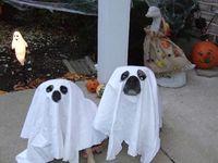 HalloweenBoo