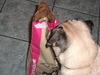 Foodbag1